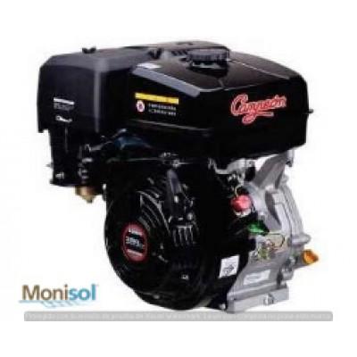 Motor Campeon ECO-390S