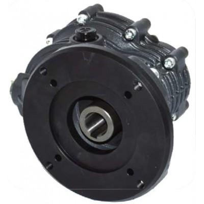 Reductor agrícola Bertolini motor eléctrico PA POLY re 127